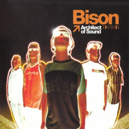 Bison - Architect of Sound (2002)_cover